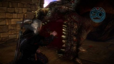 The Witcher 2: Assassins of Kings: Обзор игры